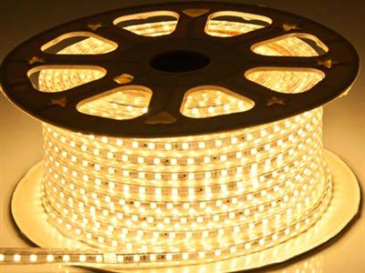 3528-60 flexible led strip 110/220V